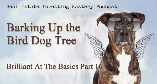 Brilliant at the Basics 16 - Barking up the Bird Dog Tree