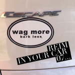 REIM In Your Car 07: Wag More, Bark Less